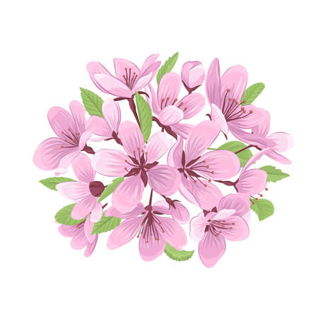 Cherry blossom bouquet vector illustration. Pink flower chaplet isolated on white background.