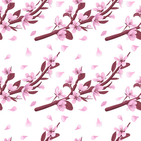 Cherry blossom branch vector seamless pattern. Pink blooming flowers and petals on white background. Gentle spring floral seamless pattern. 일러스트