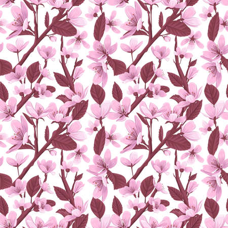 Cherry blossom flowers vector seamless pattern. Pink blooming flowers on white background. Gentle spring floral seamless pattern. 일러스트