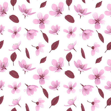 Cherry blossom flowers vector seamless pattern. Pink blossom flowers on white background. Gentle spring floral seamless pattern.