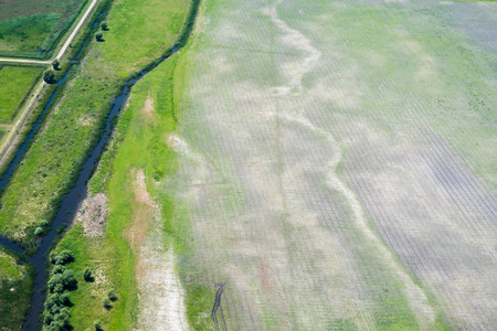 Agricultural Land Damaged by Aggressive Agriculture, in the Danube Delta, Romania