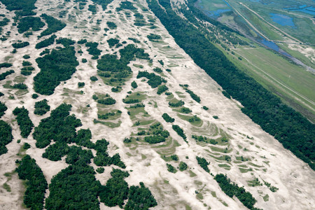 Aerial View Over Letea Forest in the Danube Delta, Romania, the forest grown on Maritime Salty Sand Stok Fotoğraf
