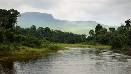 proceeds: Peque�o r�o en la selva. Bajo el cielo nublado a trav�s de colinas y monta�as, el peque�o r�o contin�a en la selva.  Foto de archivo