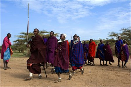 masai: Massai dance. On March, 2009. Tanzania.The Maasai (also Masai) are a Nilotic ethnic group of semi-nomadic people located in Kenya and northern Tanzania.