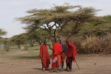 Africa. Tanzania. On March, 5th 2009 . Maasai village. A group maasai men. Savanna. A shining sun.