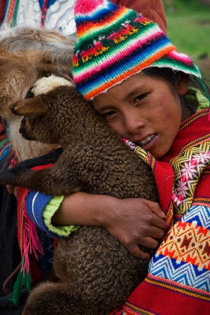 PERU SOUTH AMERICA 2008 JANUARY 2 : The Peruvian girl strong embraces a lamb of the Lama. Village in the Andes. On January 2nd 2008.