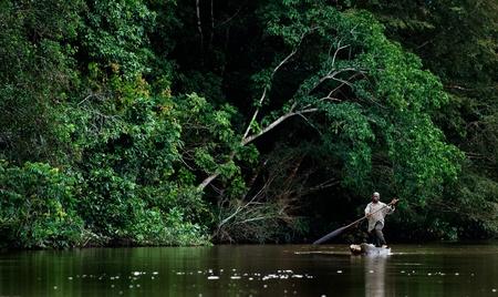 the boat on the river: R�o SANGHA, �frica CENTRAL, selva entre Camer�n Y Rep�blica Centroafricana, 01 de noviembre de 2008: las carrozas residentes locales en el barco de madera ahuecada abajo del r�o. R�o Sangha, un r�o en el �frica central, es un afluente del r�o Congo. Nov