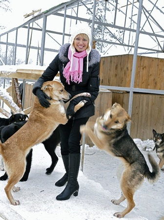 Shelter for stray dogs. A shelter of vagrant animals. Open-air cages for homeless dogs. photo