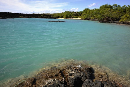 Tropical coast. Coast covered with a lava at transparent water of silent ocean.  photo