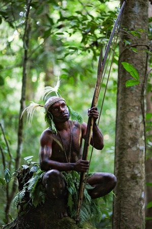 INDONESIA, NEW GUINEA, SECTOR SENGGI - 2 FEBRUARY 2009: The warrior of a Papuan tribe of Yafi in traditional clothes, ornaments and coloring. New Guinea Island, Indonesia. February 2, 2009.