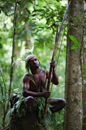 Nuova Guinea: INDONESIA, nuova GUINEA, settore SENGGI - 2 febbraio 2009: il guerriero di una trib� di Papua di Yafi in abiti tradizionali, ornamenti e colorazione. Nuova Guinea Island, Indonesia. 2 Febbraio 2009.