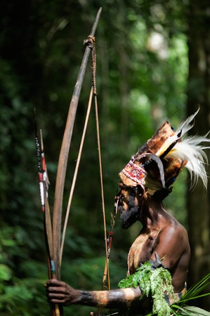 INDONESIA, NEW GUINEA, SECTOR SENGGI -  FEBRUARY 2: The Leader  of a Papuan tribe of Yafi in traditional clothes, ornaments and a coloring.  New Guinea Island, Indonesia.  February 2 2009