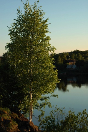 volkhov: View on the river Volkhov. In the summer, early in the morning, a view on the river Volkhov from coast. Stock Photo