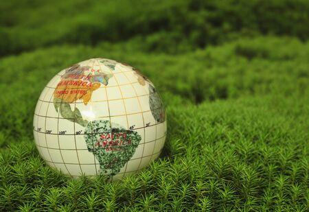Save the World. Globe in green moss. photo