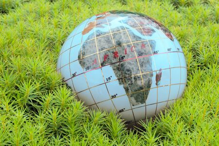Save the World. Globe in green moss. photo