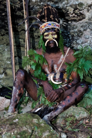 warrior tribal: NEW GUINEA, INDONESIA - 2 FEBRUARY: The warrior of a Papuan tribe of Yafi in traditional clothes, ornaments and coloring. New Guinea Island, Indonesia. February 2, 2009.