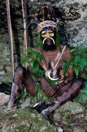 aboriginal: Nueva Guinea, Indonesia - 02 de febrero: El guerrero de una tribu de Pap�a de Yafi con ropas tradicionales, adornos y colores. Isla de Nueva Guinea, Indonesia. 02 de febrero 2009. Editorial