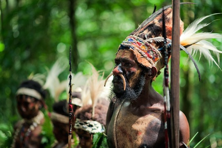 NEW GUINEA, INDONESIA - 2 FEBRUARY: The warrior of a Papuan tribe of Yafi in traditional clothes, ornaments and coloring. New Guinea Island, Indonesia. February 2, 2009.
