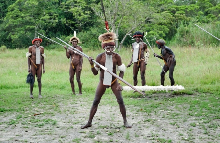 dani: DUGUM DANI VILLAGE,  IRIAN JAYA PROVINCE, NEW GUINEA, INDONESIA - JUNE 20: Dugum Dani Warriors  with a spears and traditional clothing. June 20, 2012 in Dugum Dani The Baliem Valley Papua or Irian Jaya Indonesian New Guinea