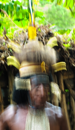 dani: DUGUM DANI VILLAGE,  IRIAN JAYA PROVINCE, NEW GUINEA, INDONESIA - JUNE 20: Abstract portrait Dugum Dani Warrior . June 20, 2012 in Dugum Dani The Baliem Valley Papua or Irian Jaya Indonesian New Guinea