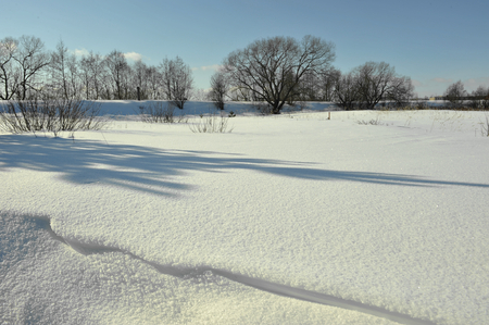 volkhov: Winter Landscape in Sunlight with long shadow  Volkhov River   Russia