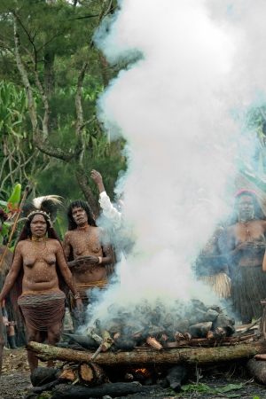dani: DUGUM DANI VILLAGE, BALIEM VALLEY, IRIAN JAYA, NEW GUINEA, INDONESIA - Juny 20, 2012:   In DUGUM Dani Village, Unidentified women of a Papuan tribe uses an earth oven method of cooking pig, in New Guinea Island,.  On Juny 20, 2012 Editorial