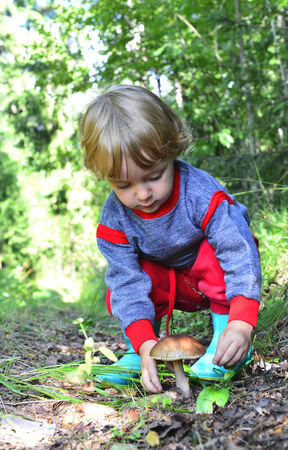 Little girl  gathers mushrooms in the forest on summer day photo
