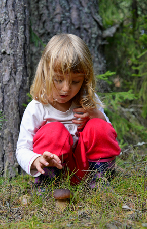 Little girl with mashrooms in the summer forest photo