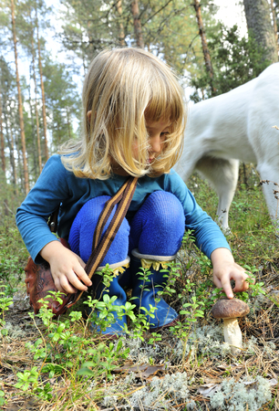 fungoid: Little girl gathers mushrooms in the forest on summer day