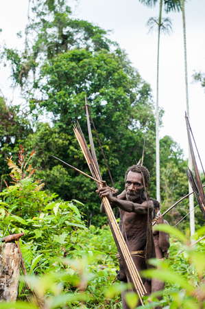 warrior tribal: NDONESIA, NEW GUINEA, IRIAN JAYA, ONNI VILLAGE - JUNE 27, 2012: The Papuan from a Korowai tribe aims for shoots an archer. Korowai kombai (Kolufo) with bow and arrows on the natural forest background