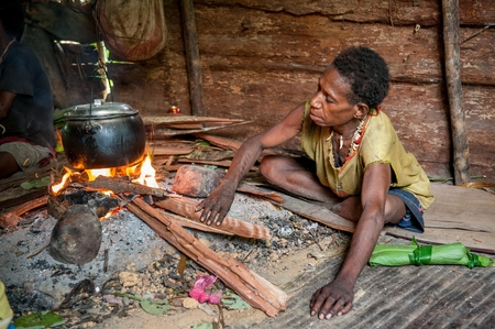 Nuova Guinea: ONNI VILLAGE, NEW GUINEA, INDONESIA - JUNE 24: The woman from a Papuan tribe korowai cooks food. Korowai Kombai ( Kolufo).On June 24, 2012 in Onni Village, New Guinea, Indonesia Editoriali
