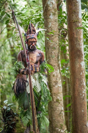 australasia: NEW GUINEA, INDONESIA - 2 FEBRUARY: The warrior of a Papuan tribe of Yafi in traditional clothes, ornaments and coloring. Aims for shoots an archer. New Guinea Island, Indonesia. February 2, 2009. Editorial