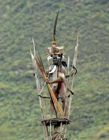 new guinea: DANI VILLAGE, Wamena, Irian Jaya, Nuova Guinea, Indonesia, 25 JULY 2009: Yali Mabel, il capo della trib� Dani sulla torre di osservazione. Luglio 2009 La Valle Baliem, Indonesia, Nuova Guinea