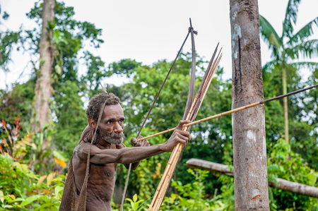 WILD JUNGLE OF NEW GUINEA ISLAND, INDONESIA - JUNE 24: Korowai tribe. Papuan shooting arrows from a bow. Natural green jungle background. June 24, 2012 near Onni Village, New Guinea, Indonesia