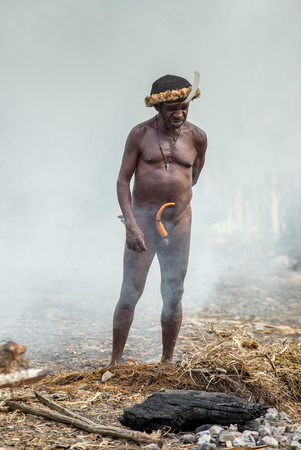 BALIEM VALLEY, WEST PAPUA, INDONESIA, JUNE 4, 2016: Dugum Dani tribe village. Man of Dugum Dani tribe cooks food, uses an earthoven method of cooking pig. West Papua. New Guinea Island Redactioneel