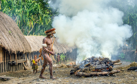 BALIEM VALLEY, WEST PAPUA, INDONESIA, JUNE 4, 2016: Dugum Dani tribe village. Man of Dugum Dani tribe cooks food, uses an earthoven method of cooking pig. West Papua. New Guinea Island 에디토리얼