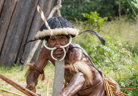 DANI VILLAGE, WAMENA, IRIAN JAYA, NEW GUINEA, INDONESIA - JUNE 4: The  armed Papuan attakking. Warrior of Dani Dugum tribe . June 4, 2016, New Guinea Island. Editoriali
