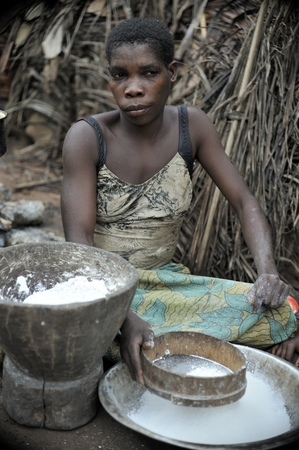 DZANGA-SANHA FOREST RESERVE, CENTRAL-AFRICAN REPUBLIC (CAR), AFRICA, 2008 NOVEMBER 2: Jungle of CAR. Africa. Jungle of the Central African Republic. Baka woman cooks food, crushing a flour in a mortar