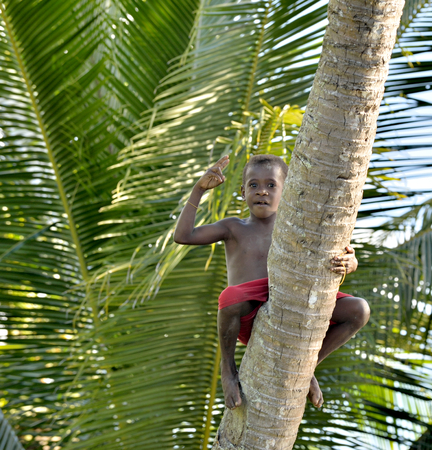 WEST PAPUA (IRIAN JAYA), ASMAT PROVINCE, NEW GUINEA, INDONESIA - MAY 22, 2016: - Unidentified boy of asmat people on the tree. Small village of Asmat tribe in deep jungle of New Guinea. May 22, 2016