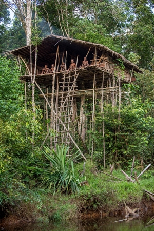 WILD JUNGLE, IRIAN JAYA, NEW GUINEA, INDONESIA - MAY 19, 2016: Group of Papuan Korowai tribe in traditional house on a tree.  May 19, 2016, Wild New Guinea Jungle, Irian Jaya, Indonesia Editorial