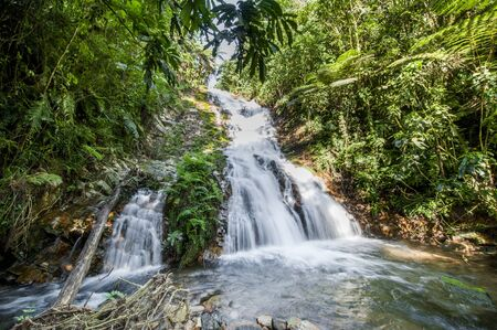 Small waterfall in the dark forest. Waterfalls and vegetation inside the Bwindi Impenetrable Forest in Uganda (Africa)