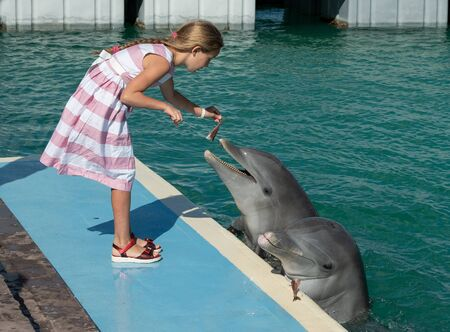 A little girl feeds a Dolphins. Cuban Dolphinarium.