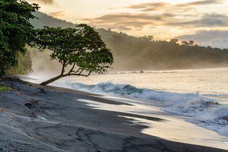 Black sand volcanic beach in Tangkoko National Park. Early foggy morning on the coast of Tangkoko National Park. Sulawesi. Indonesia