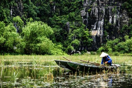 boatman: VIETNAM TAM COC