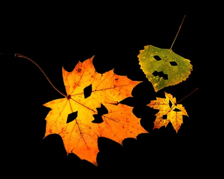 One colorful fall leaf with cut out pumpkin face on a white background