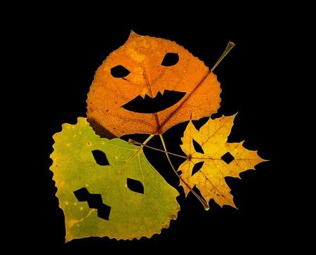 Three colorful fall leaves with cut out pumpkin faces on a black background. Stock Photo