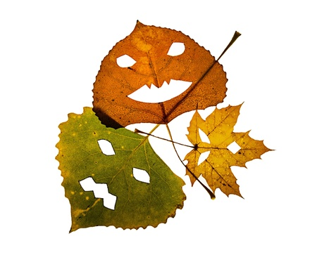 Three colorful fall leaves with cut out pumpkin faces on a white background.