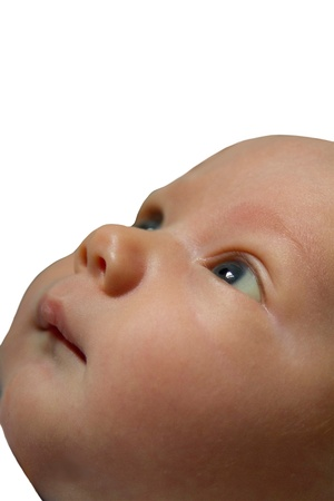 whimsey: Baby looking upward cut out on white background with copy space