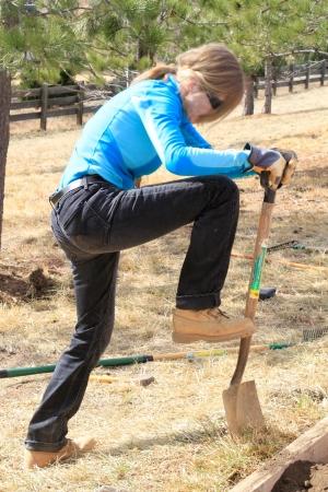 Woman shovels in garden bed. Editorial