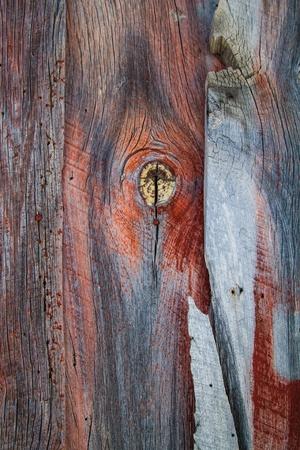 barnwood: Madera resistida granero muestra desgastada pintura roja y el agujero nudo grande con grano.